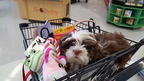 Petco Animal Supplies in Lompoc